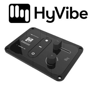 HyVibe