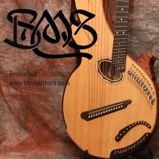 BMS Guitars